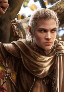 Jeu de rôle fantasy elfe